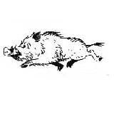 Comic Halali-Wildschwein